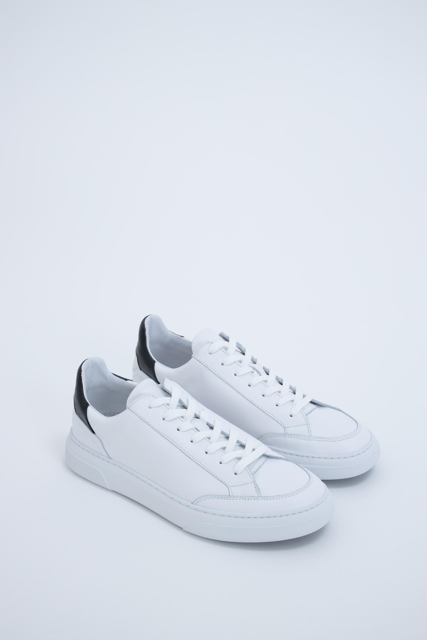 Sneaker Off Court