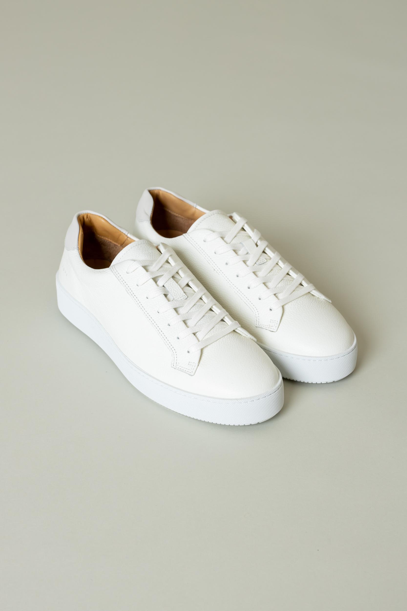 Sneaker Salas